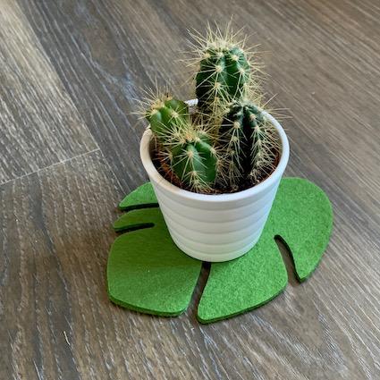 zelfs je cactus wordt blij van deze groene onderzetters vilt handgemaakt wasbaar